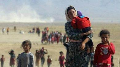 Photo of Ауғанстаннан Өзбекстанға 158 әскери қызметкер мен босқын өтті