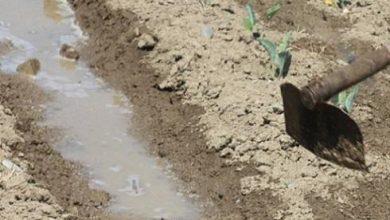 Photo of «Еркектік намысын таптағаны» үшін әйелін шауып өлтірді