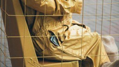Photo of Өзбекстанда екі жылда екі мың жемқор жауапқа тартылды