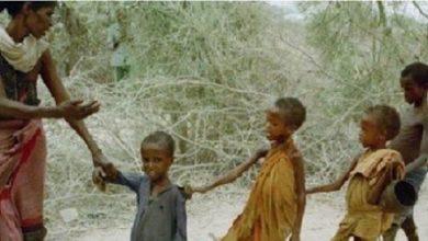 Photo of БҰҰ: Адамзат алапат аштықтың алдында тұр
