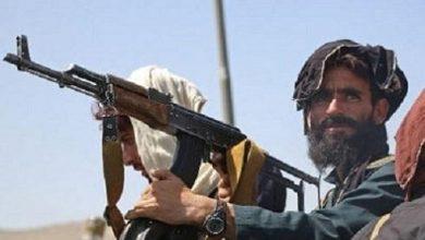 Photo of «Талибан» таяуда қатарын қылмыскерлерден тазартуға кіріседі