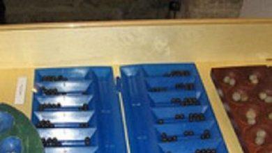 Photo of Мемлекеттік қызметшілер тоғызқұмалақтан жарыс өткізді